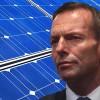 abbott and solar panels