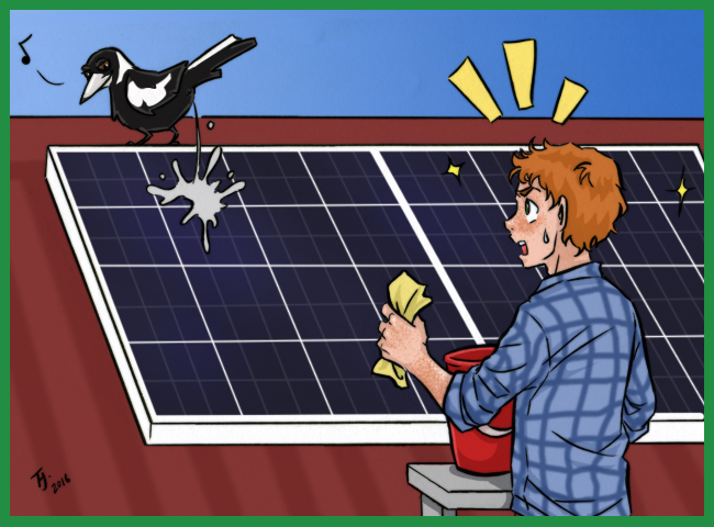 a bird shitting on a solar panel
