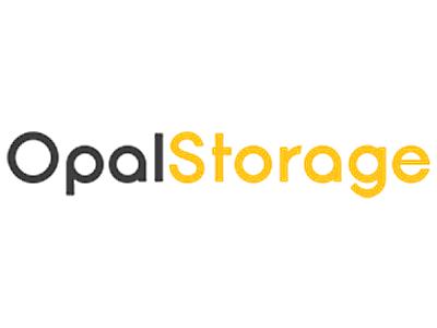 Opal solar batteries review