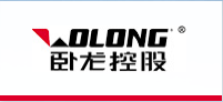 Wolong Electric Group logo