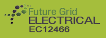 Future Grid Electrical