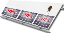 3 conventional solar panels, one with bird poo on it